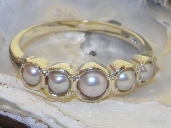 pearl ring in shell